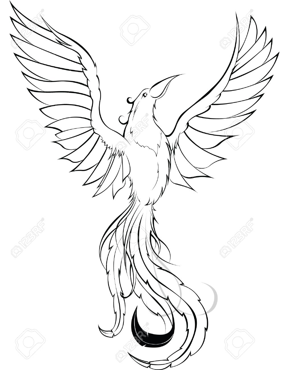 phoenix sketch royalty free cliparts vectors and stock