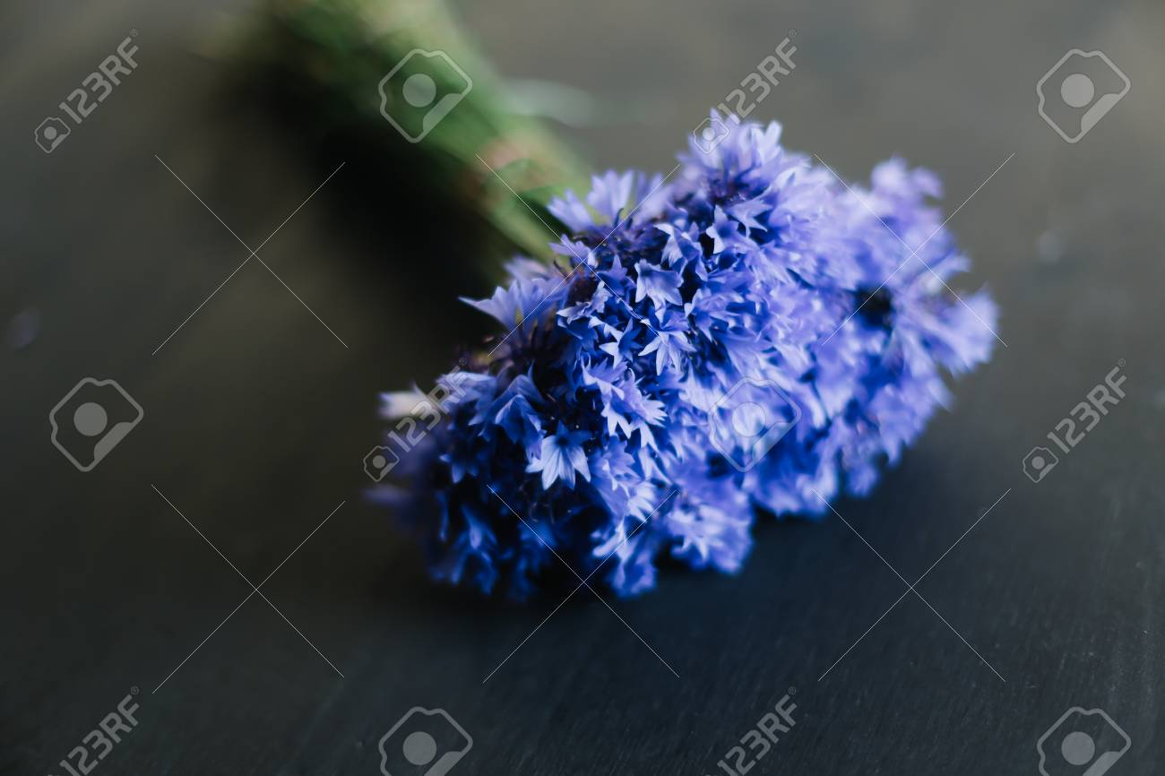 Bouquet Of Cornflowers On A Dark Background Wedding Details Stock Photo Picture And Royalty Free Image Image 110203212