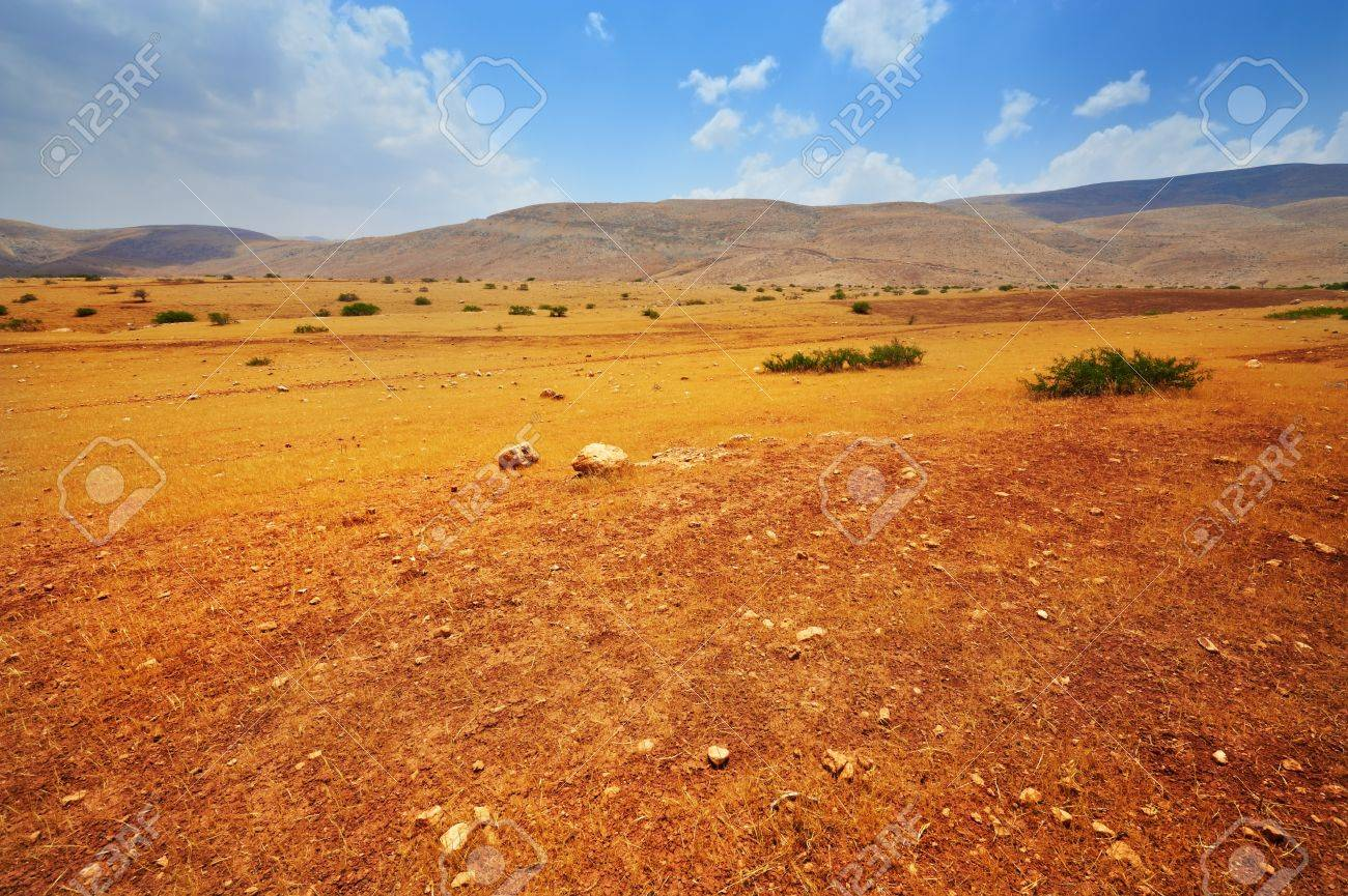 Stones in Sand Hills of Samaria, Israel Stock Photo - 10658564