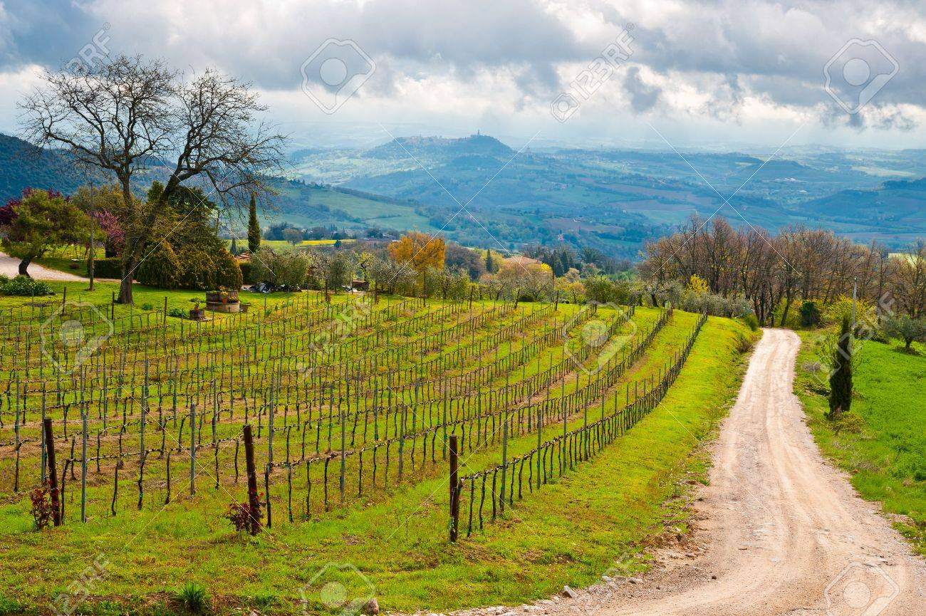 Dirt Road Leading to the Farmhouse in Umbria, Italy Stock Photo - 15354153