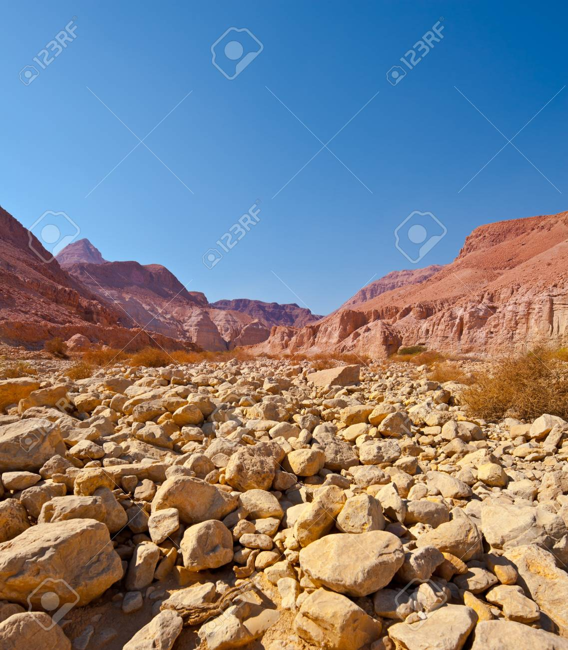 Dry Riverbed in the Judean Desert Stock Photo - 16508364