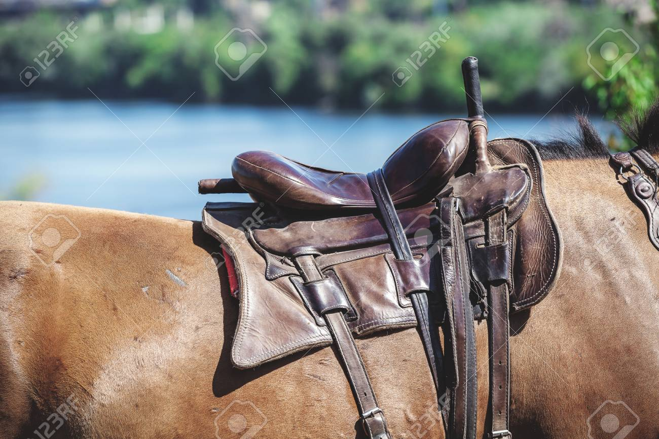 Brown Leather Seat Is Fixed On The Back Of A Red Horse Stock Photo Picture And Royalty Free Image Image 78161362