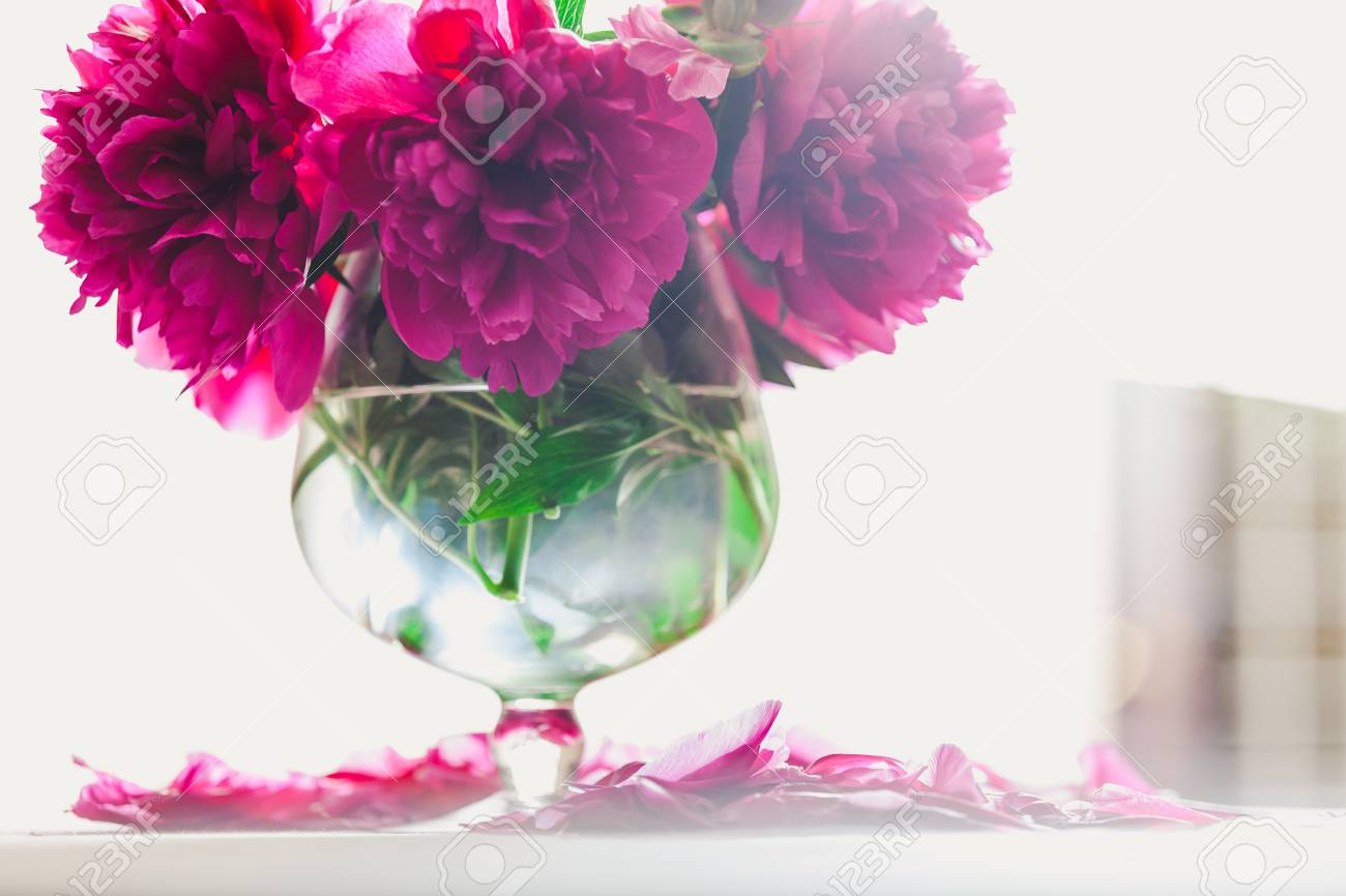 Bright red flowers on short stems stand in a transparent vase on a white background. & Bright Red Flowers On Short Stems Stand In A Transparent Vase ...