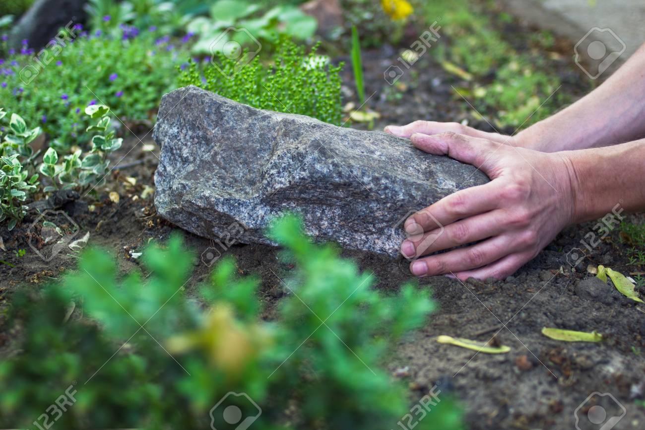 Grün Familien Botanischen Thema Ökologie Konzept Mit Dekorieren Stil  Standard Bild   29470390