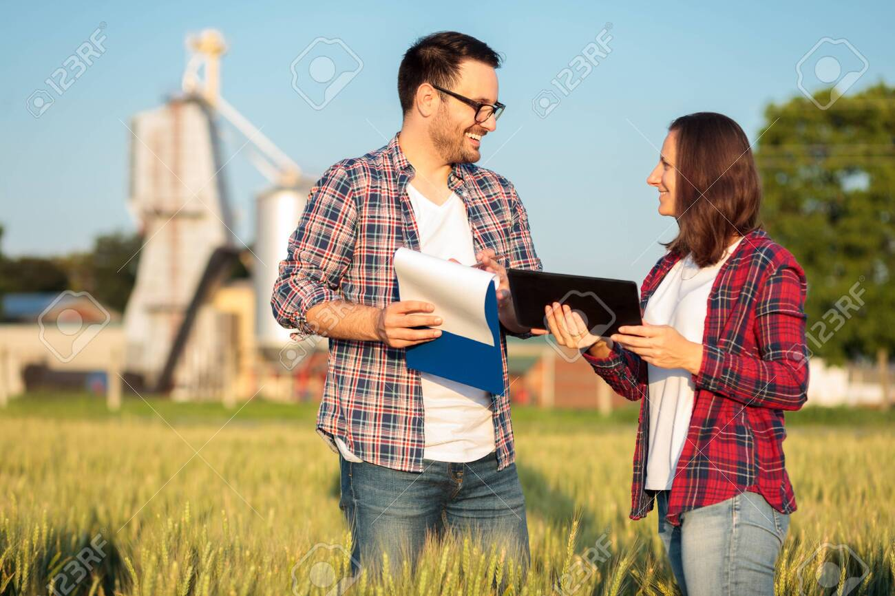 Two happy young male and female farmers or agronomists inspecting a wheat field before the harvest. Checking data on a tablet and clipboard. Organic farming and healthy food production. - 131578482