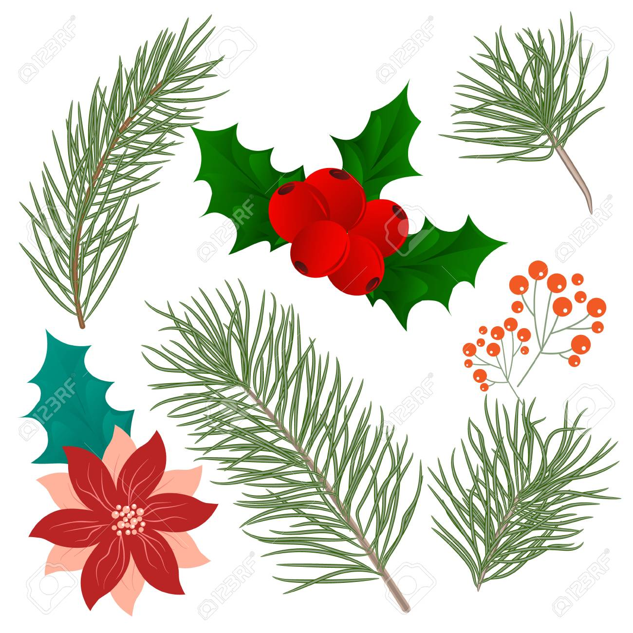 Christmas Branch Vector.Christmas Tree Branches Set For Christmas Decor Branches Close Up