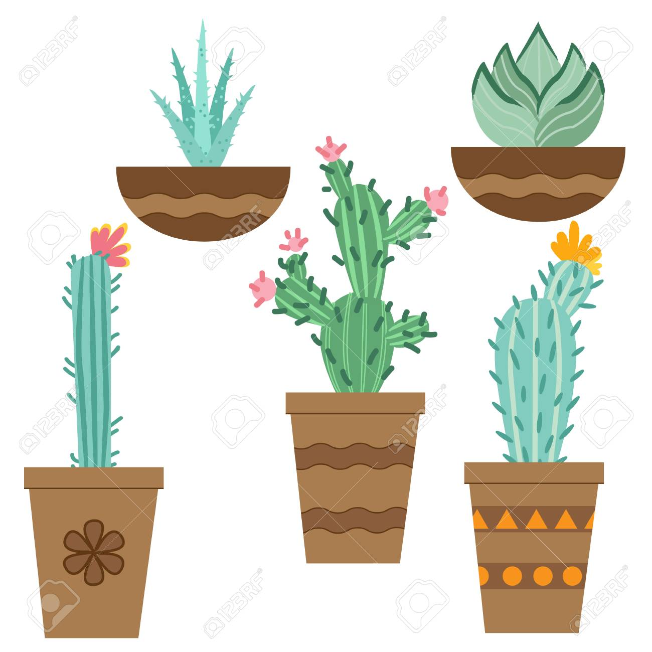 Cactus Flower In Pots For Flowers And Plants Bright Cacti Aloe