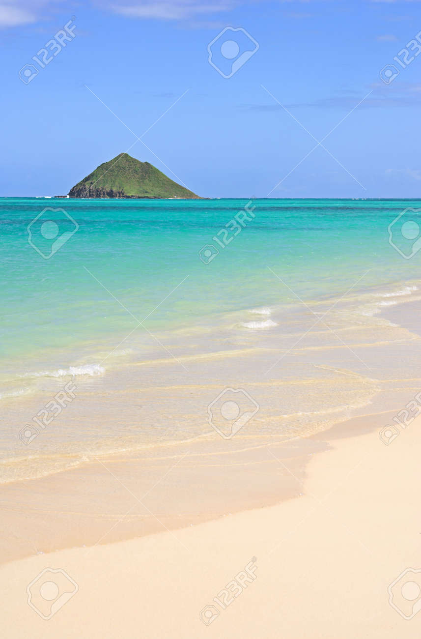 Tropical dreams on a sunny day Stock Photo - 750786