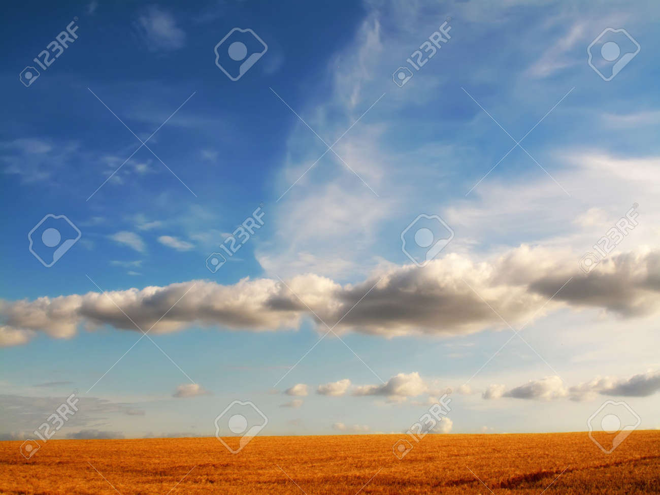 Sunset at the countryside Stock Photo - 5606589