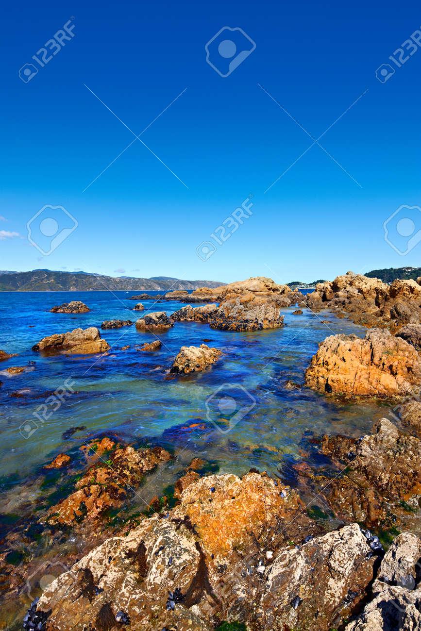 The famous rocks at Karaka Bay, Wellington, New Zealand Stock Photo - 9541473