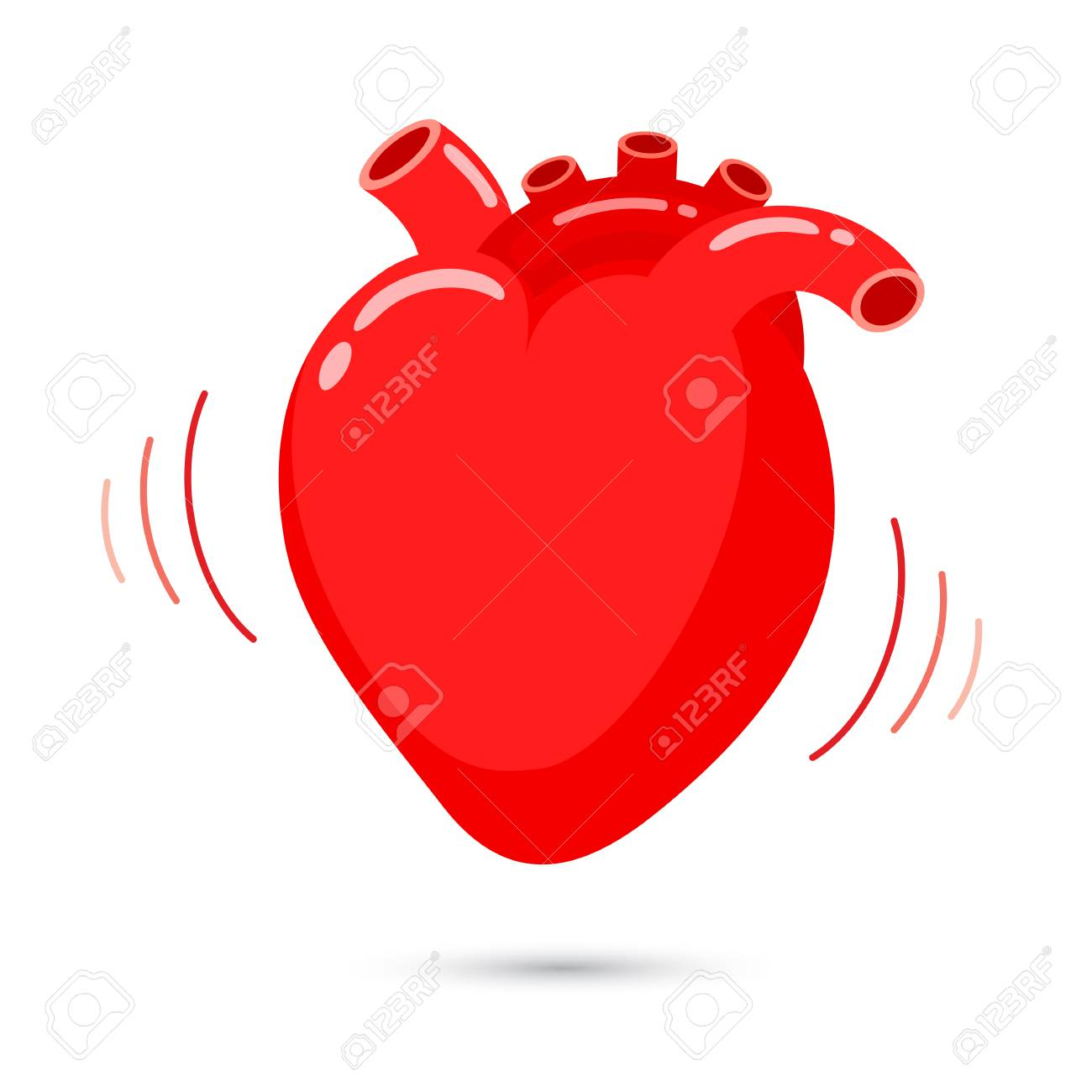 Human heart with beat design internal organ vector illustraion human heart with beat design internal organ vector illustraion isolated on white background stock ccuart Gallery