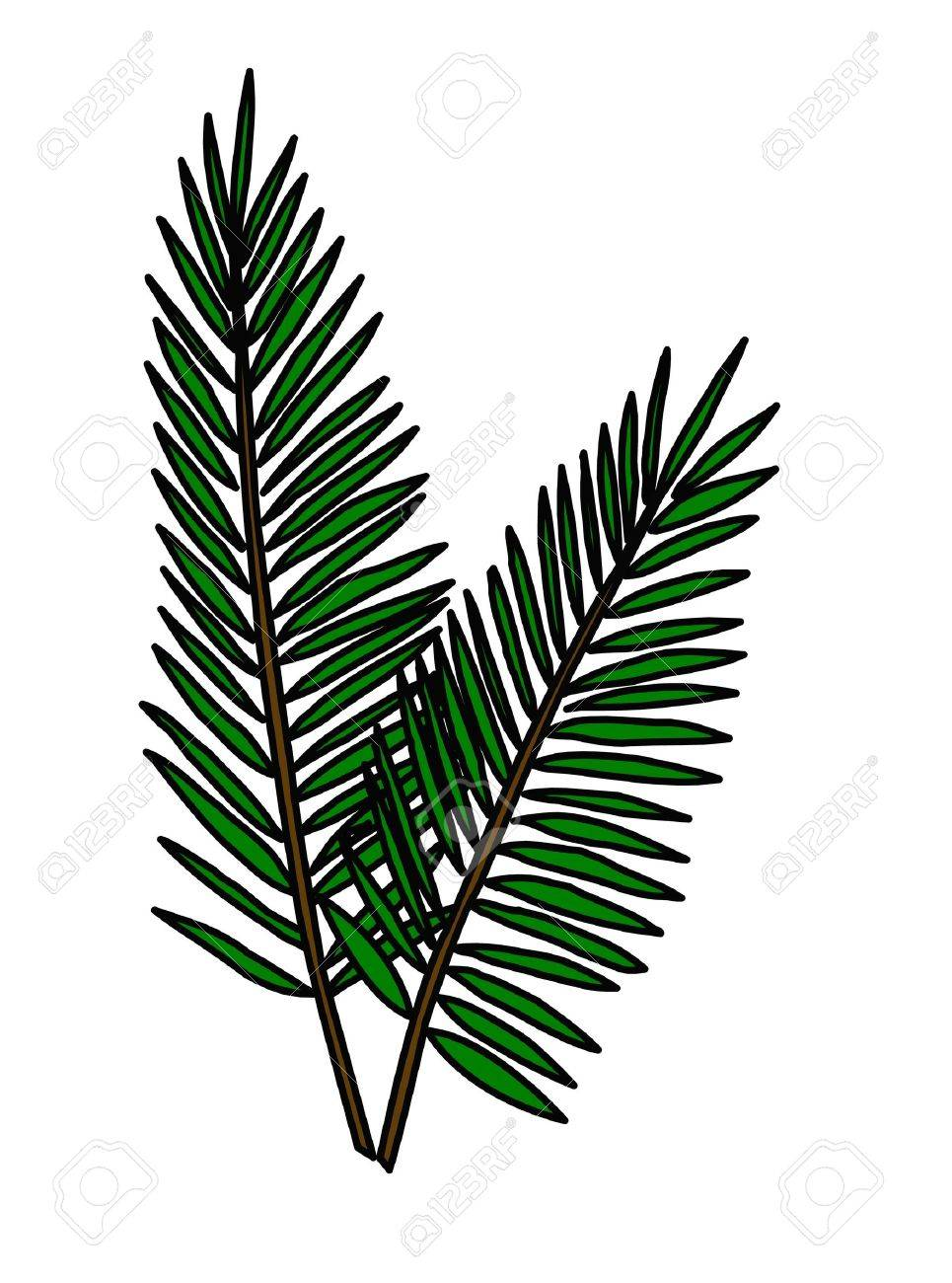 152 palm sunday stock vector illustration and royalty free palm
