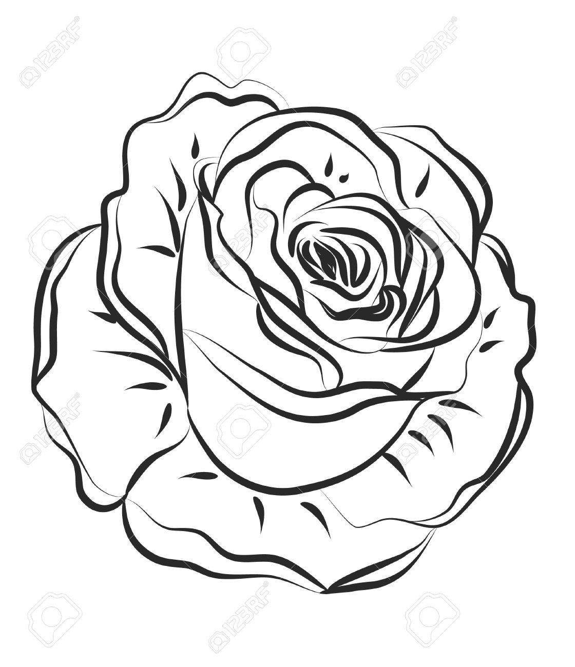 Rose Silhouette with brushes Stock Vector - 13042070