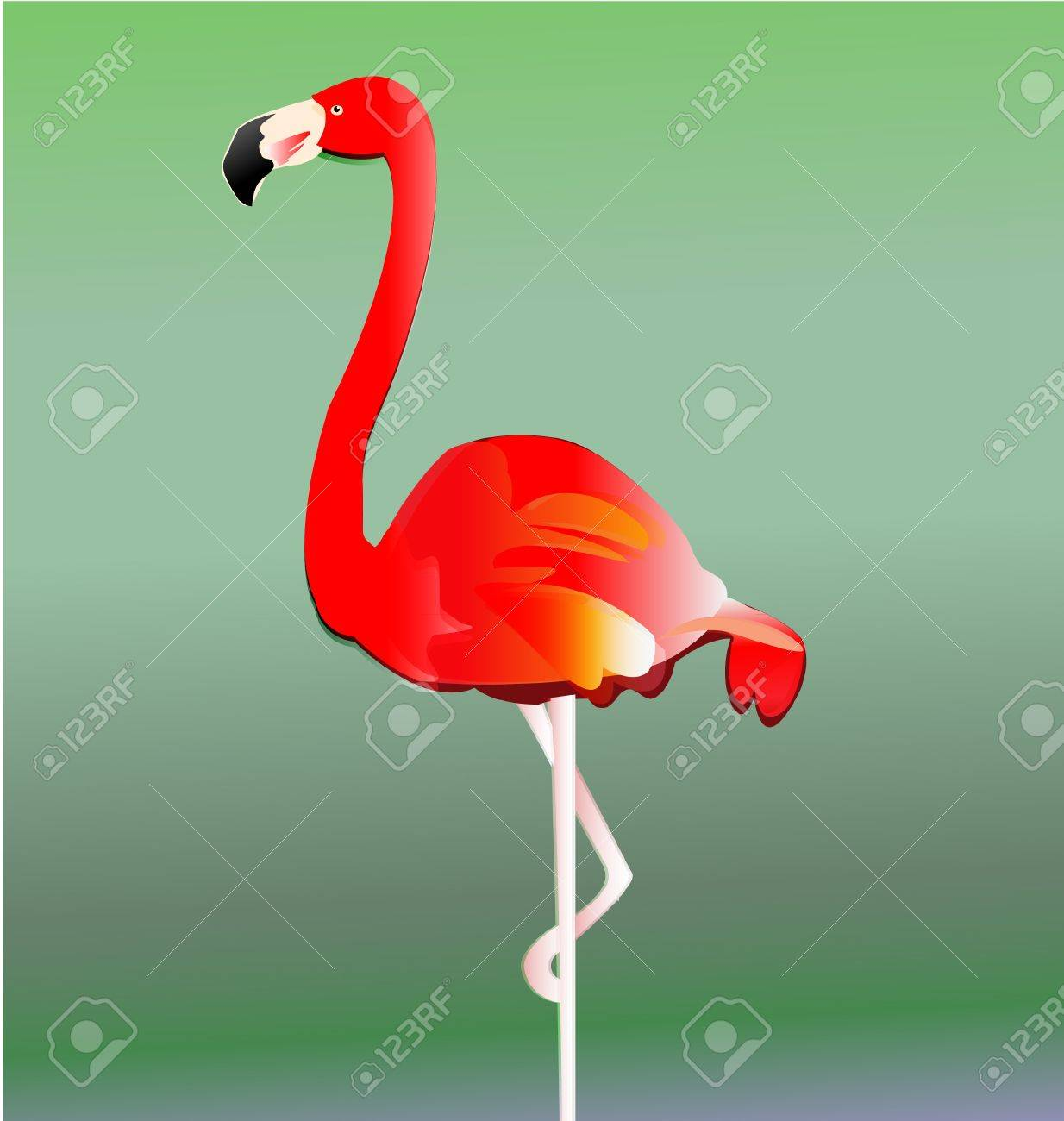 Flamingo bird vector eps10 Stock Vector - 14760792