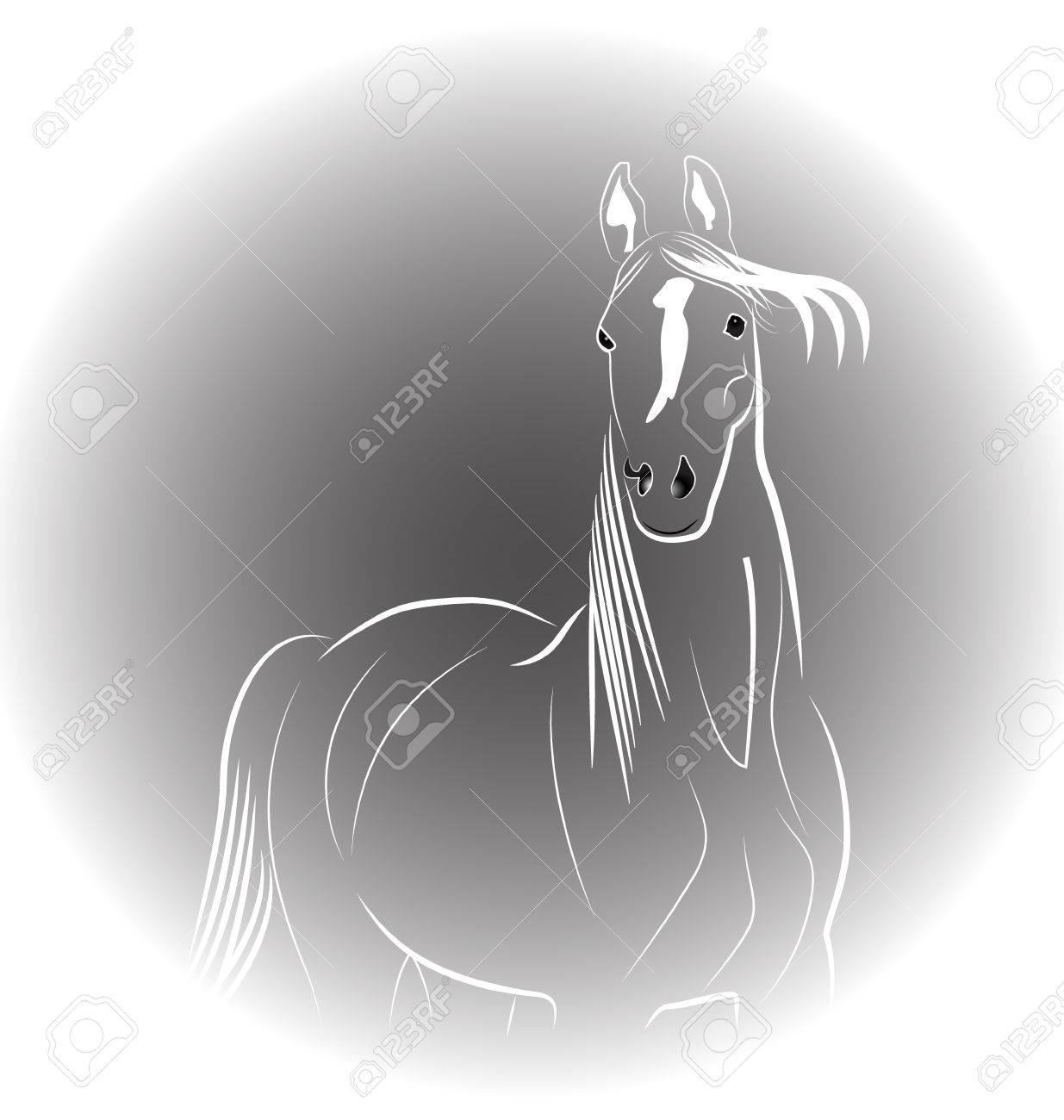 Horse portrait icon vector Stock Vector - 27341032