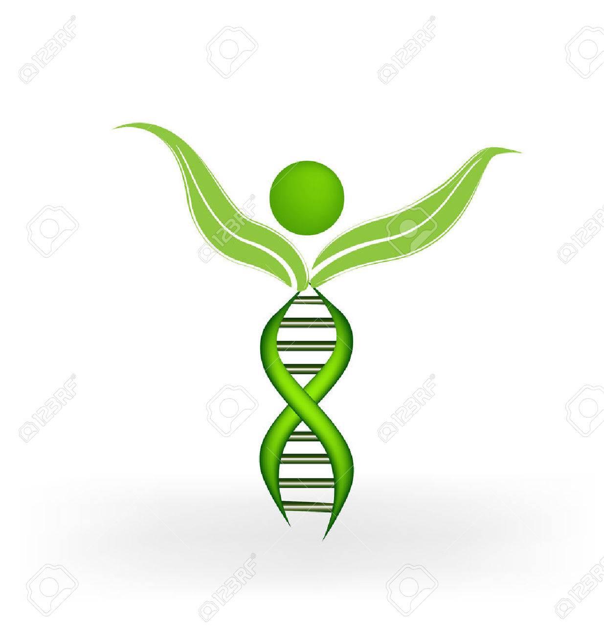 DNA Strands figure vector icon - 40602125