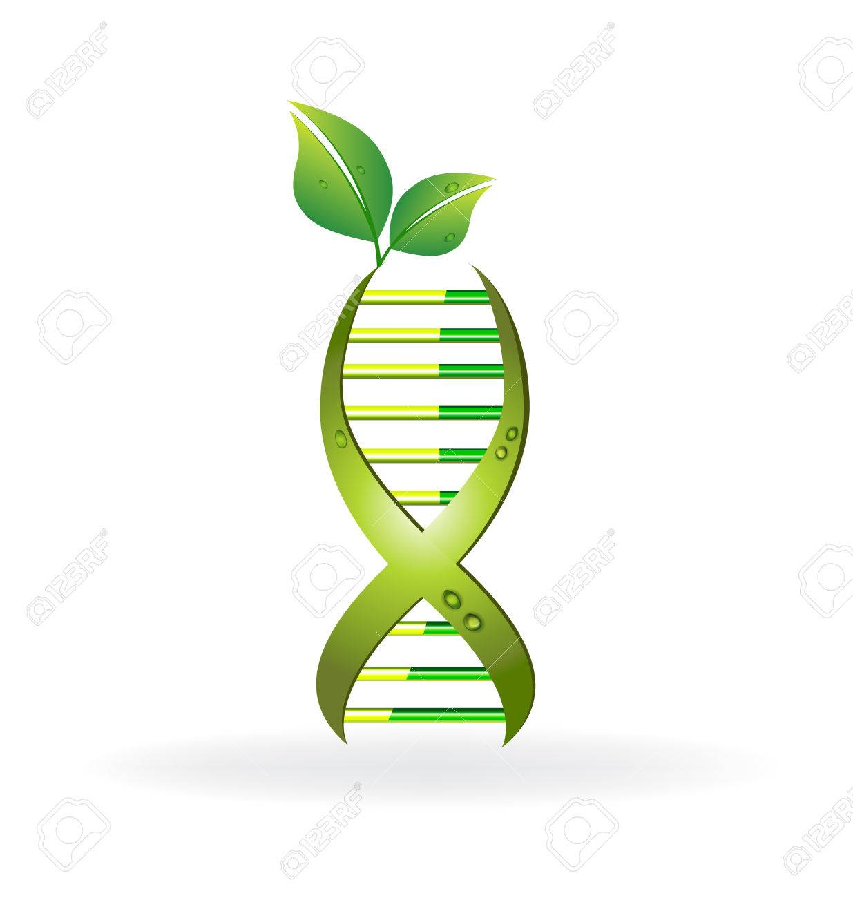 DNA cell with green leafs icon vector design - 66204057