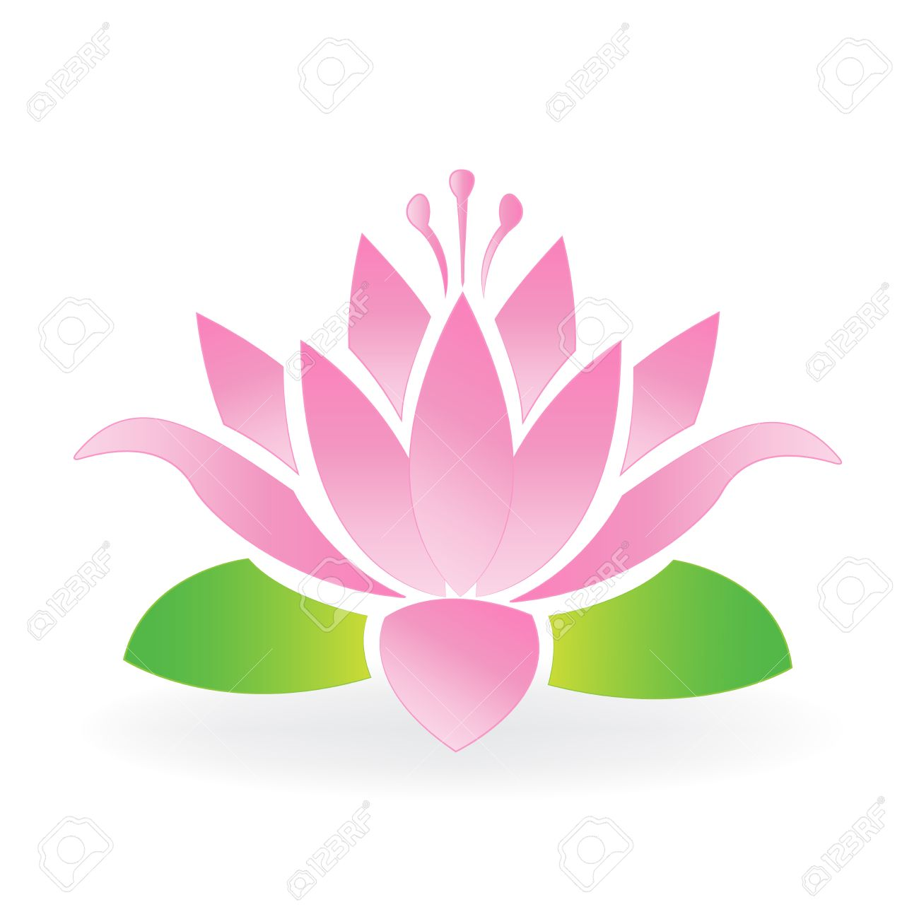 Blossom Lotus Flower Logo Vector Royalty Free Cliparts Vectors And