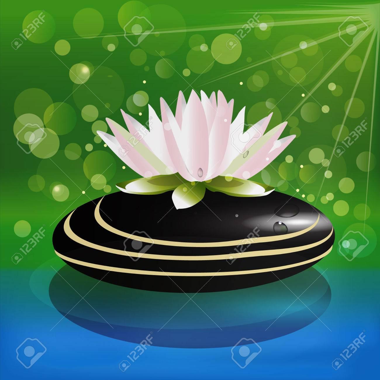 Beautiful Lotus Flower On Zen Stone Background Vector Stock