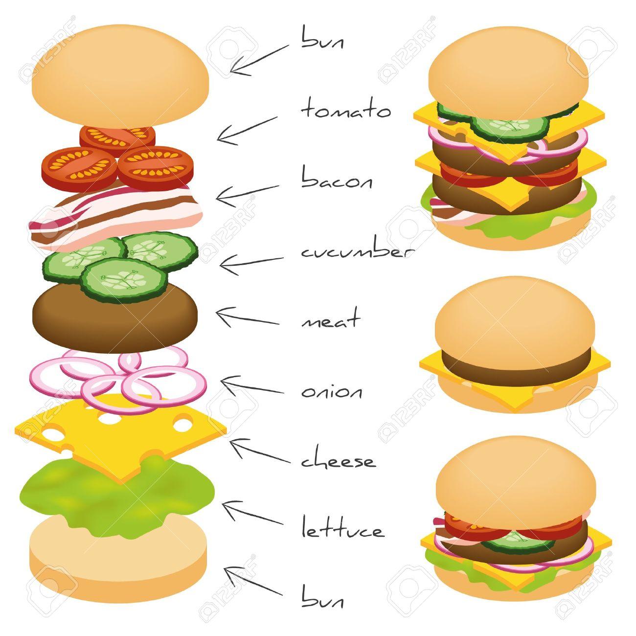 hamburger ingredients Stock Vector - 15302734