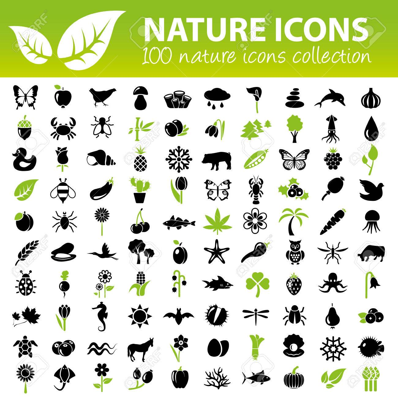 nature icons collection - 35112088