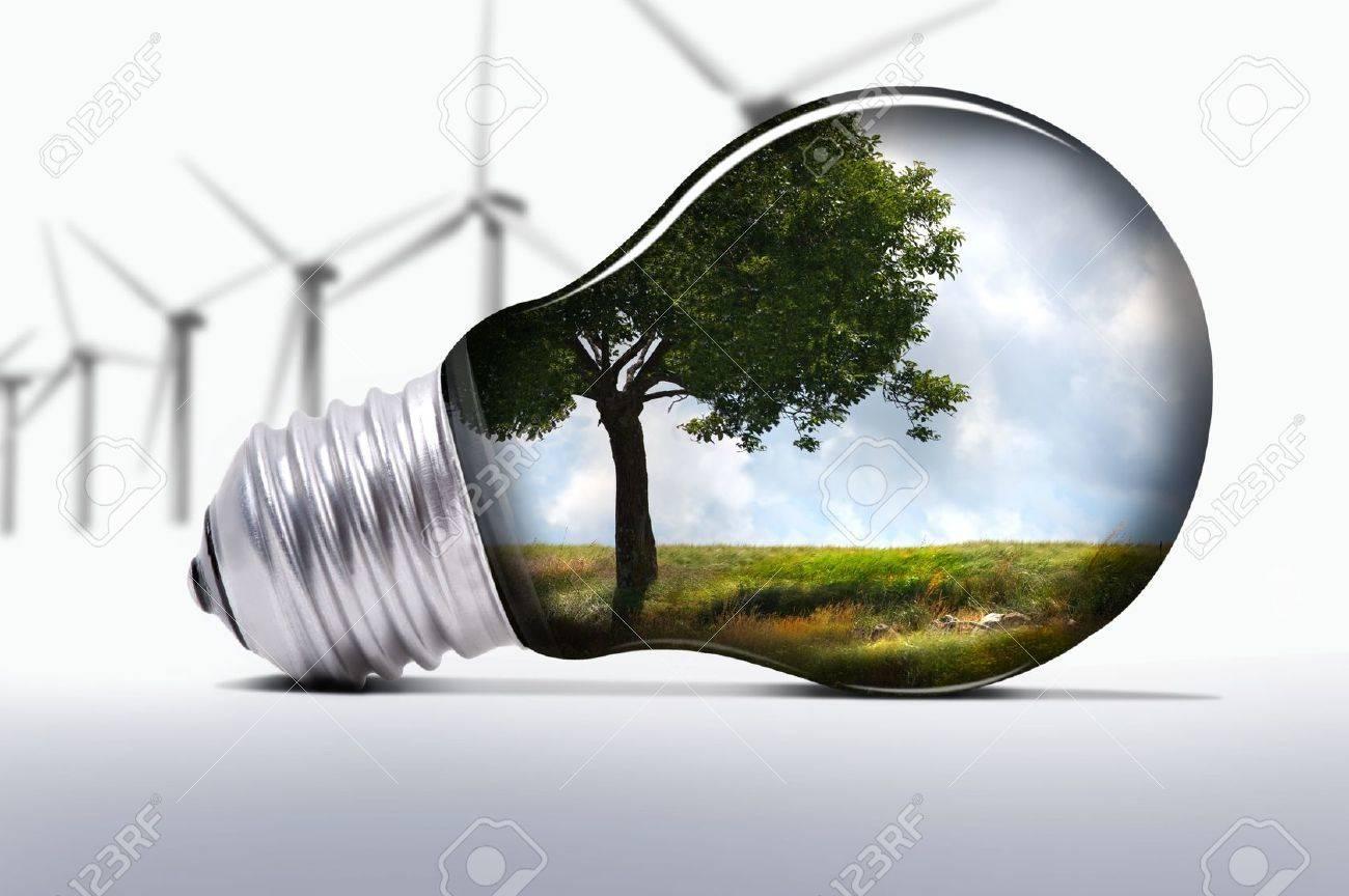 environment - 5673571
