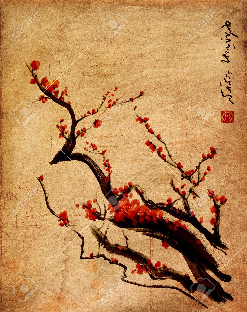 Sakura, cherry blossom plum chinese brush paintingRed cherry blossom chinese brush painting Stock Photo - 22947515