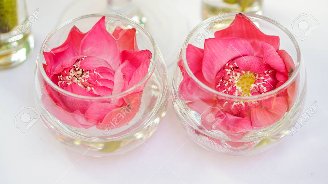 Pink Lotus Water Lily Decorate In Water Glass Modern Style Stock