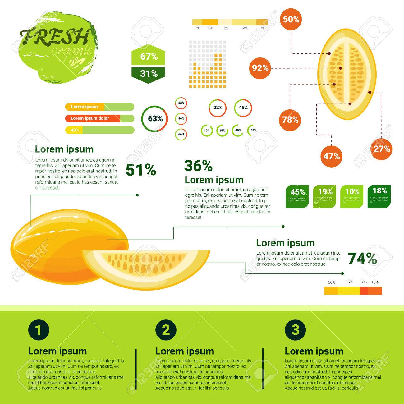 Fresh Organic Infographics Natural Fruits Growth, Agriculture And Farming Flat Vector Illustration Banque d'images - 75594893