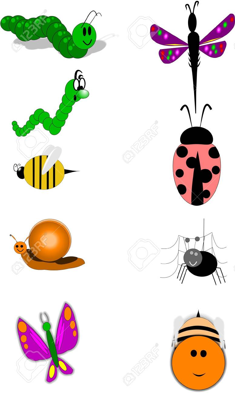 insects on white Stock Vector - 9823530