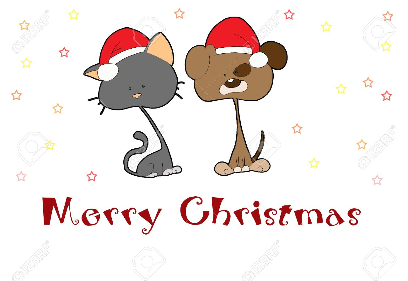 christmas card with cute cat and dog stock photo picture and