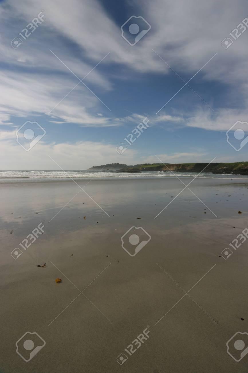vertical scenic view of pebble beach California Stock Photo - 319476