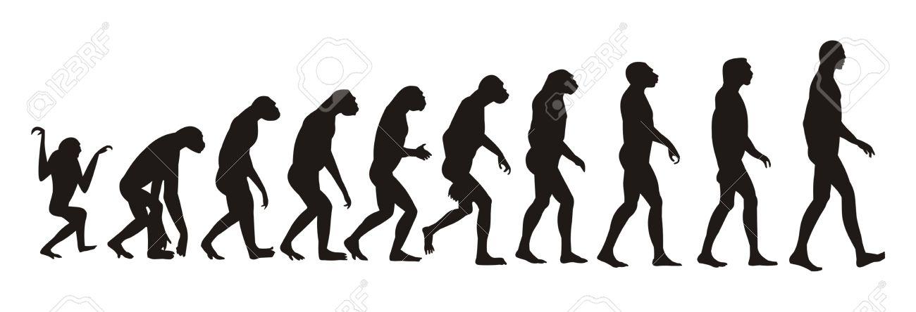 human evolution Stock Vector - 2109925