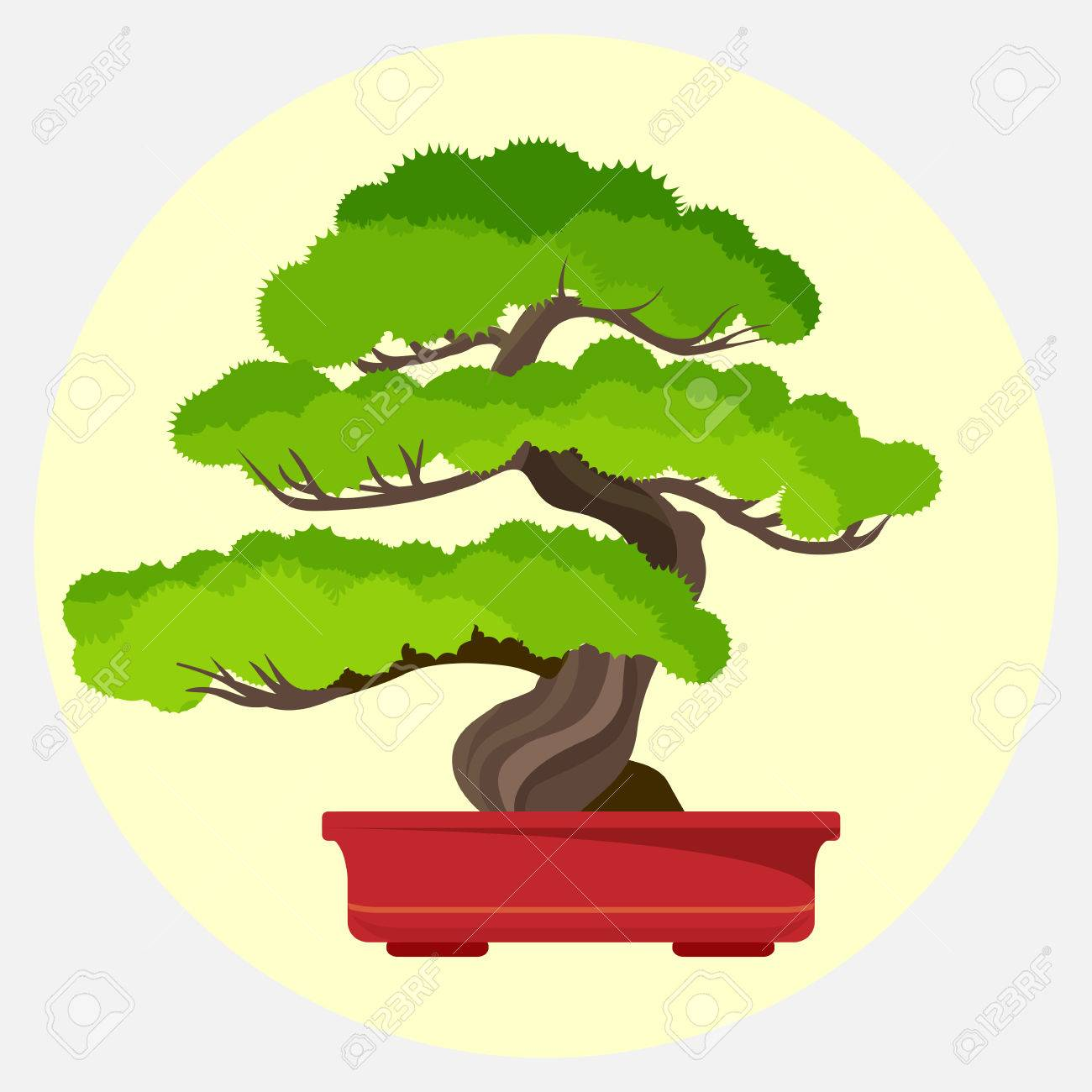 Bonsai Pine Decorative Small Tree Growing In Container Vector Royalty Free Cliparts Vectors And Stock Illustration Image 79255486