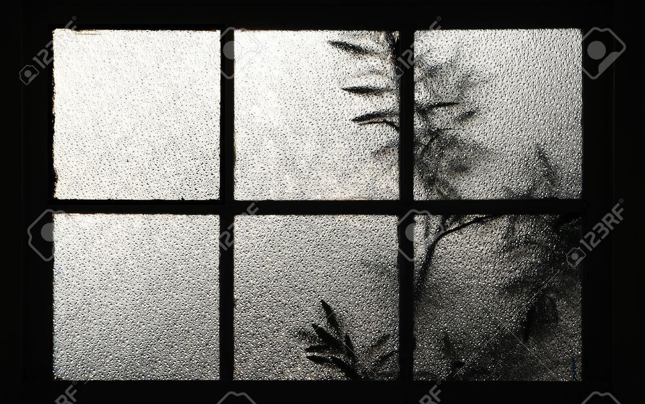 Glass Window Texture tree behind a window texture of frosted glass stock photo, picture