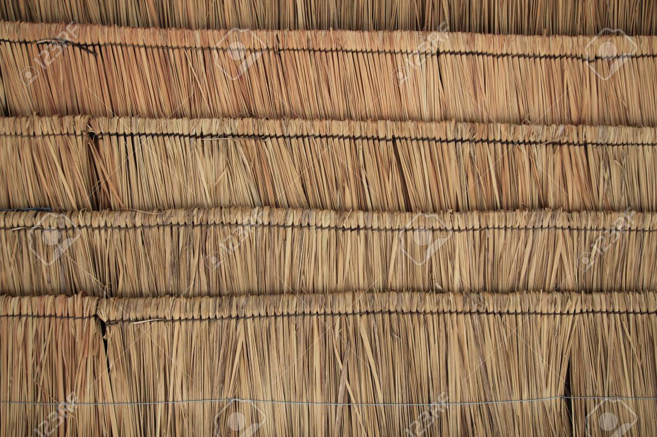 Marvelous Rice Straw As Cattle Feed Stock Photo Picture And Royalty