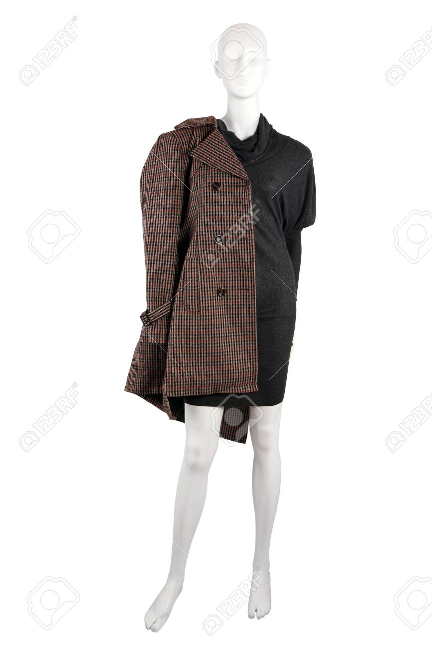 60915ca37e44 Mannequin Dressed In Gray Dress And A Coat
