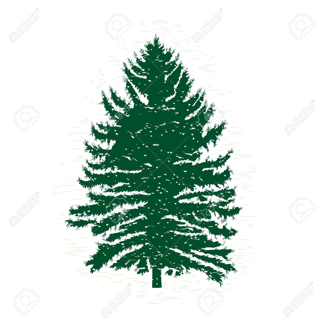 Silhouettes of green pine tree vector illustration vintage silhouettes of green pine tree vector illustration vintage textured grunge fir tree design template altavistaventures Gallery