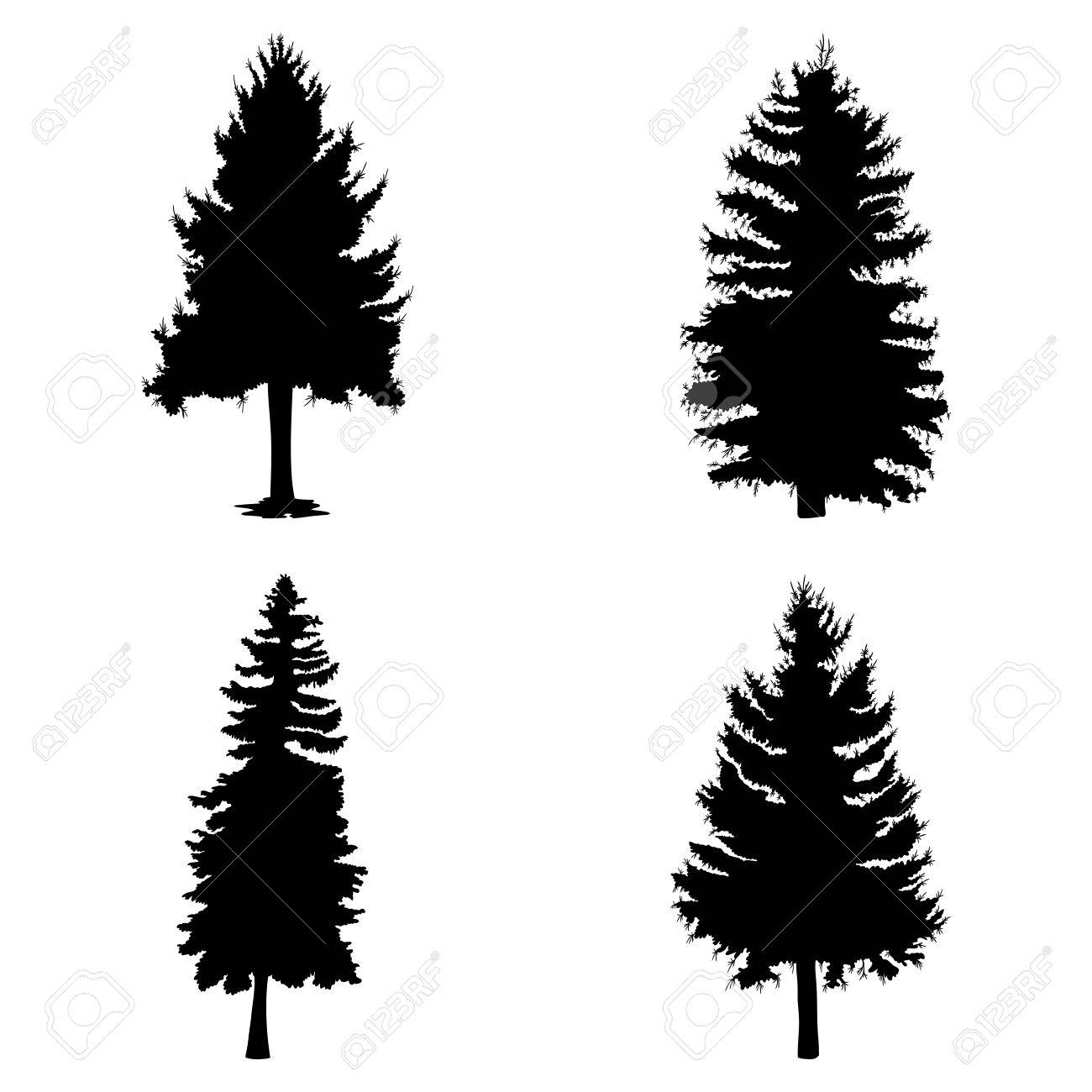 Fir trees set isolated on white background illustration. Collection of black coniferous trees silhouettes. Hand drawing. - 67981390