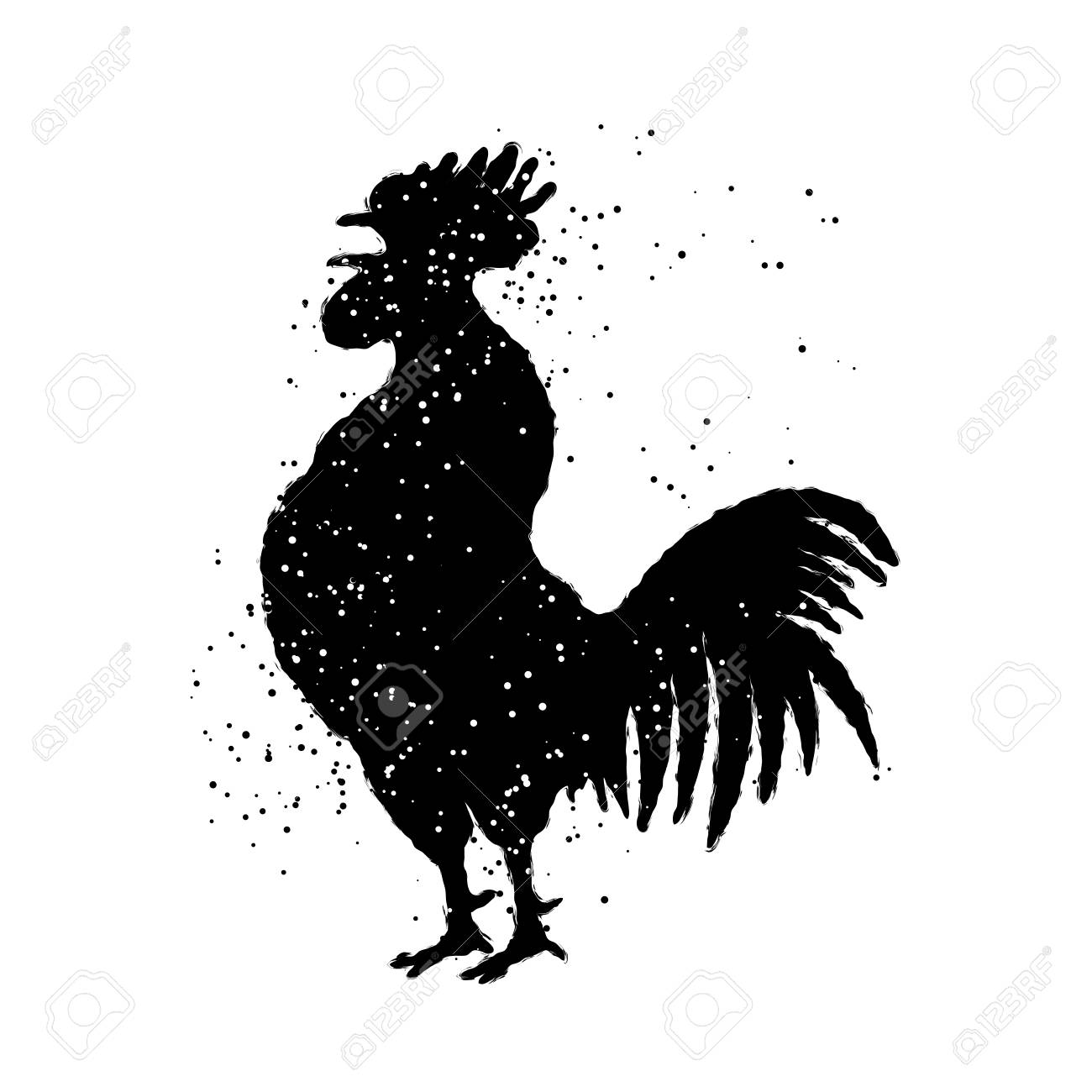 Großer schwarzer Hahn tranniert