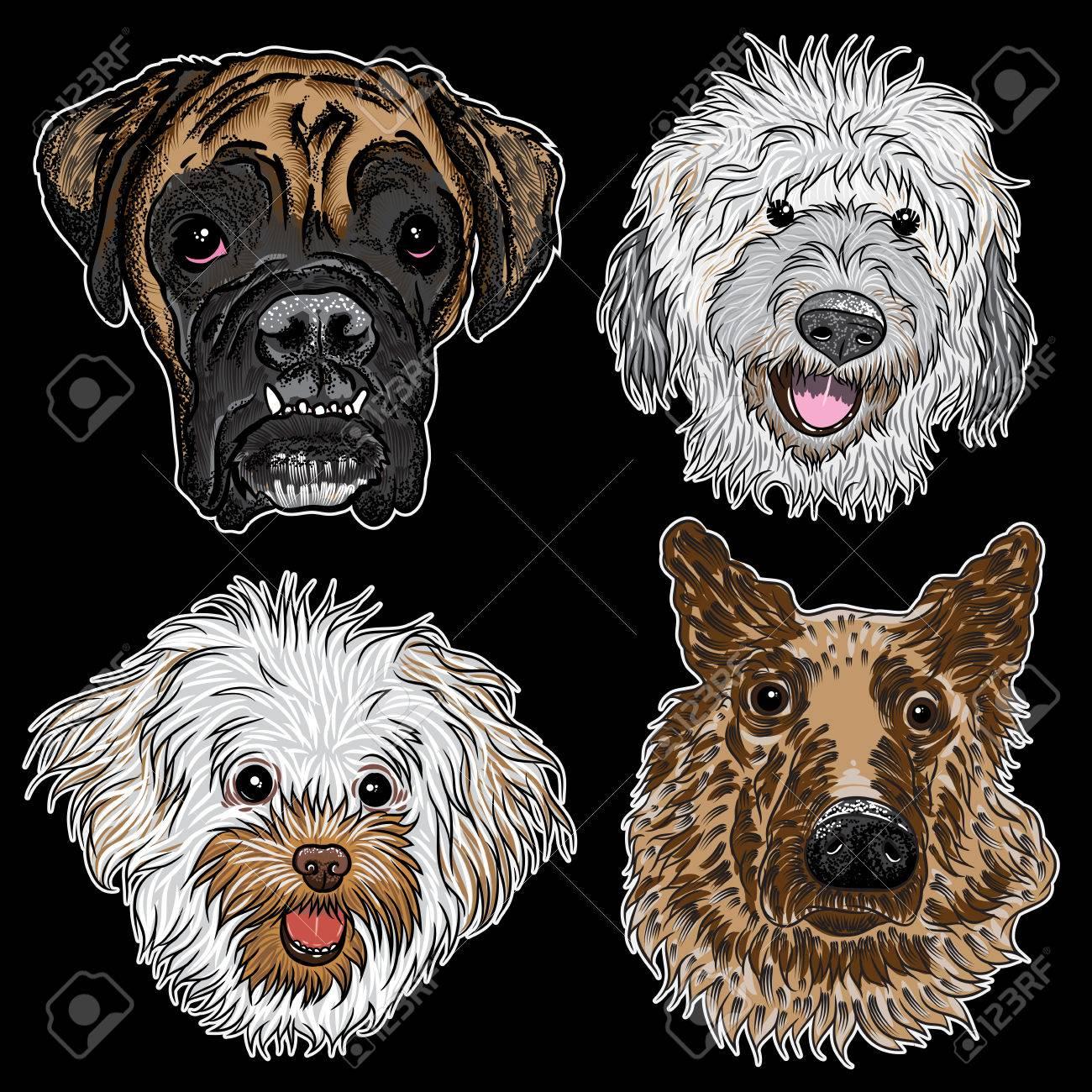Diferentes Tipos De Perros De Dibujos Animados Dibujado A Mano