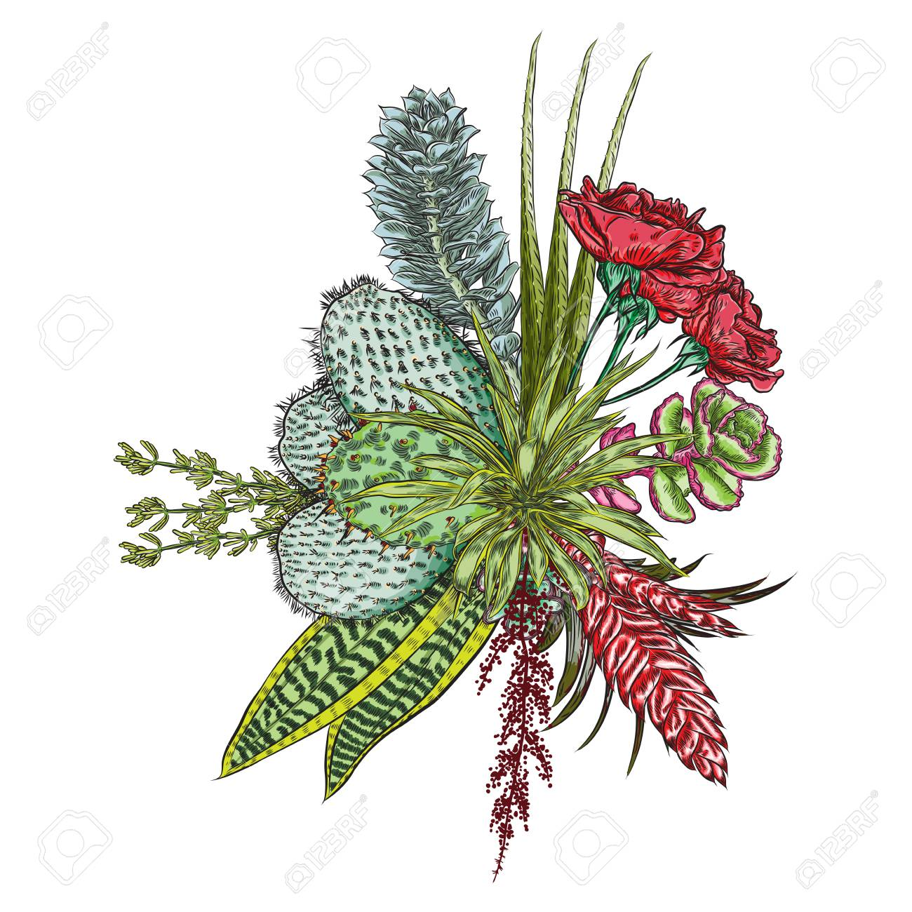 Flowers Bouquet Floral Collection With Various Exotic Jungle Royalty Free Cliparts Vectors And Stock Illustration Image 104013529