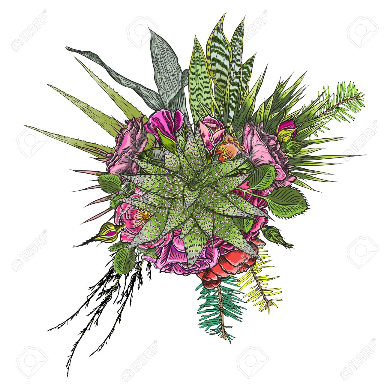 Green Colorful Succulent Bouquet Ikebana Tattoo Concept Selection Royalty Free Cliparts Vectors And Stock Illustration Image 104013532