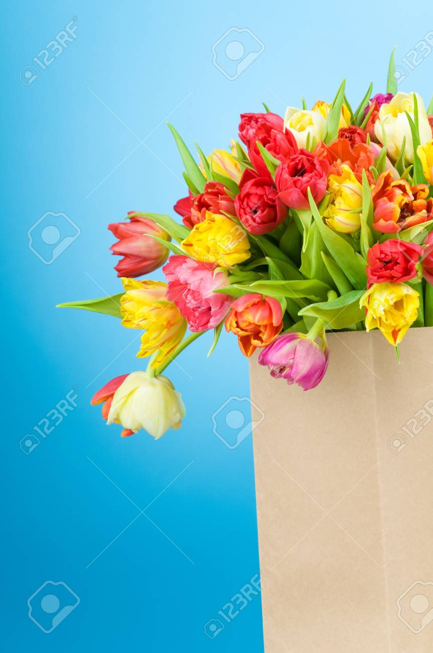 Tulips in paper bag on blue background Stock Photo - 18527839