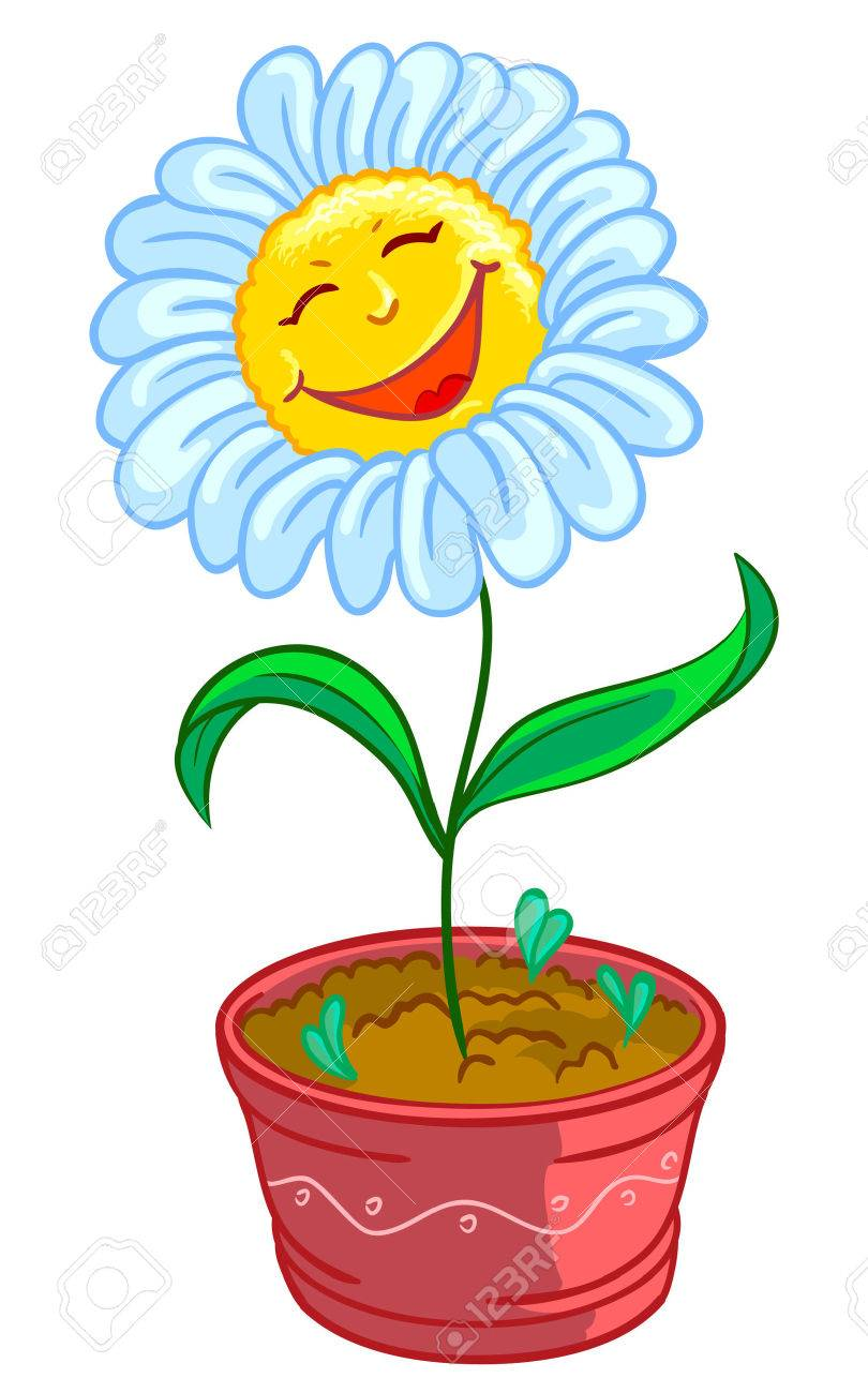 Chamomile in pot Stock Vector - 7269406