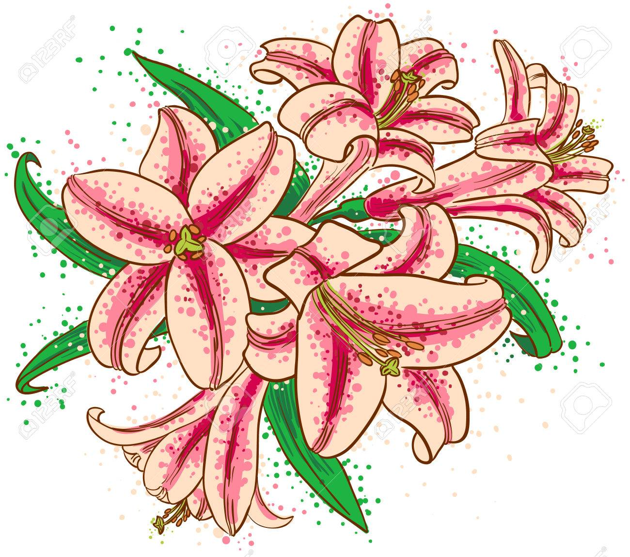 A bouquet of lilies Stock Vector - 8957760
