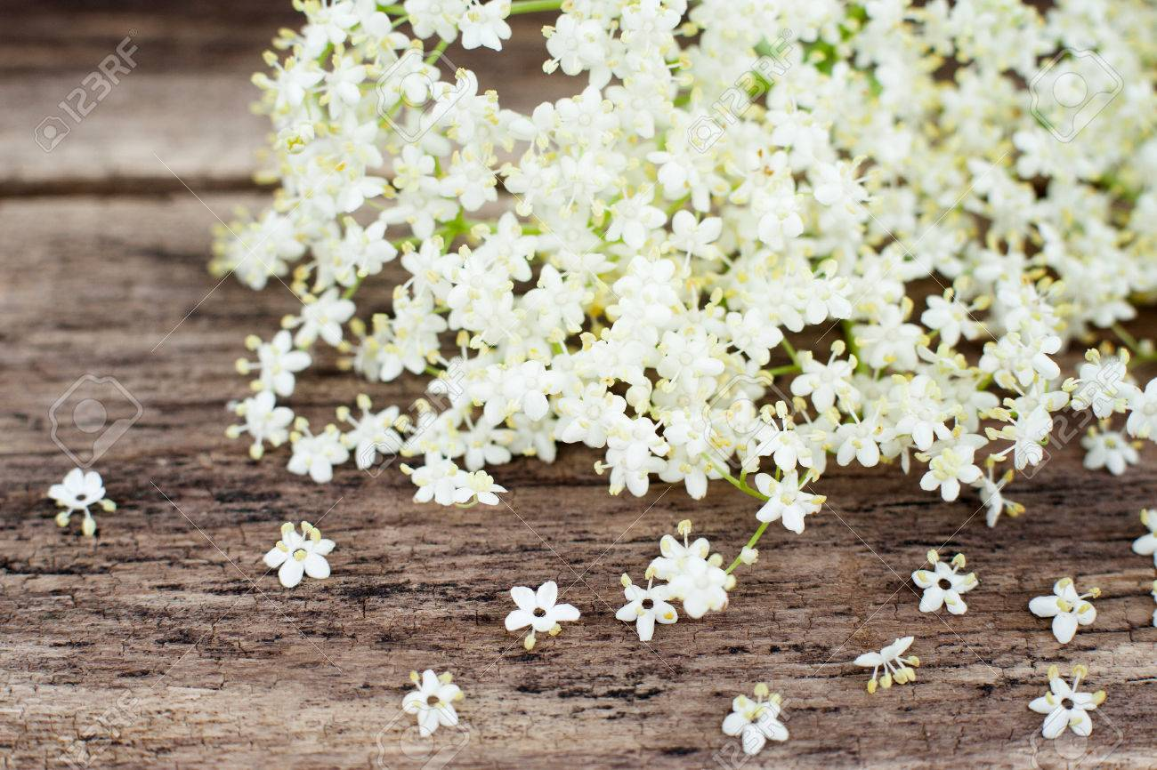 Bunch of white flowers on wooden background copyspace closeup bunch of white flowers on wooden background copyspace closeup of spring blossom on wood mightylinksfo