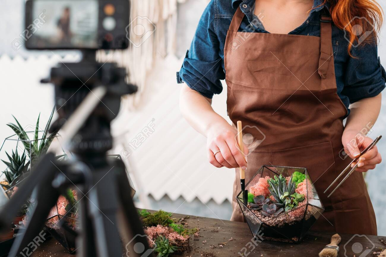 DIY florarium video course. Woman showing on smartphone camera how to create modern floral arrangement with succulents. - 129911751