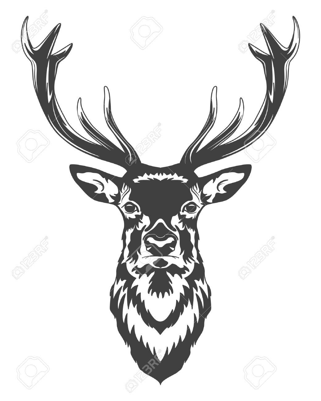 Monochrome deer head isolated on white background. Vector illustration. - 46083670