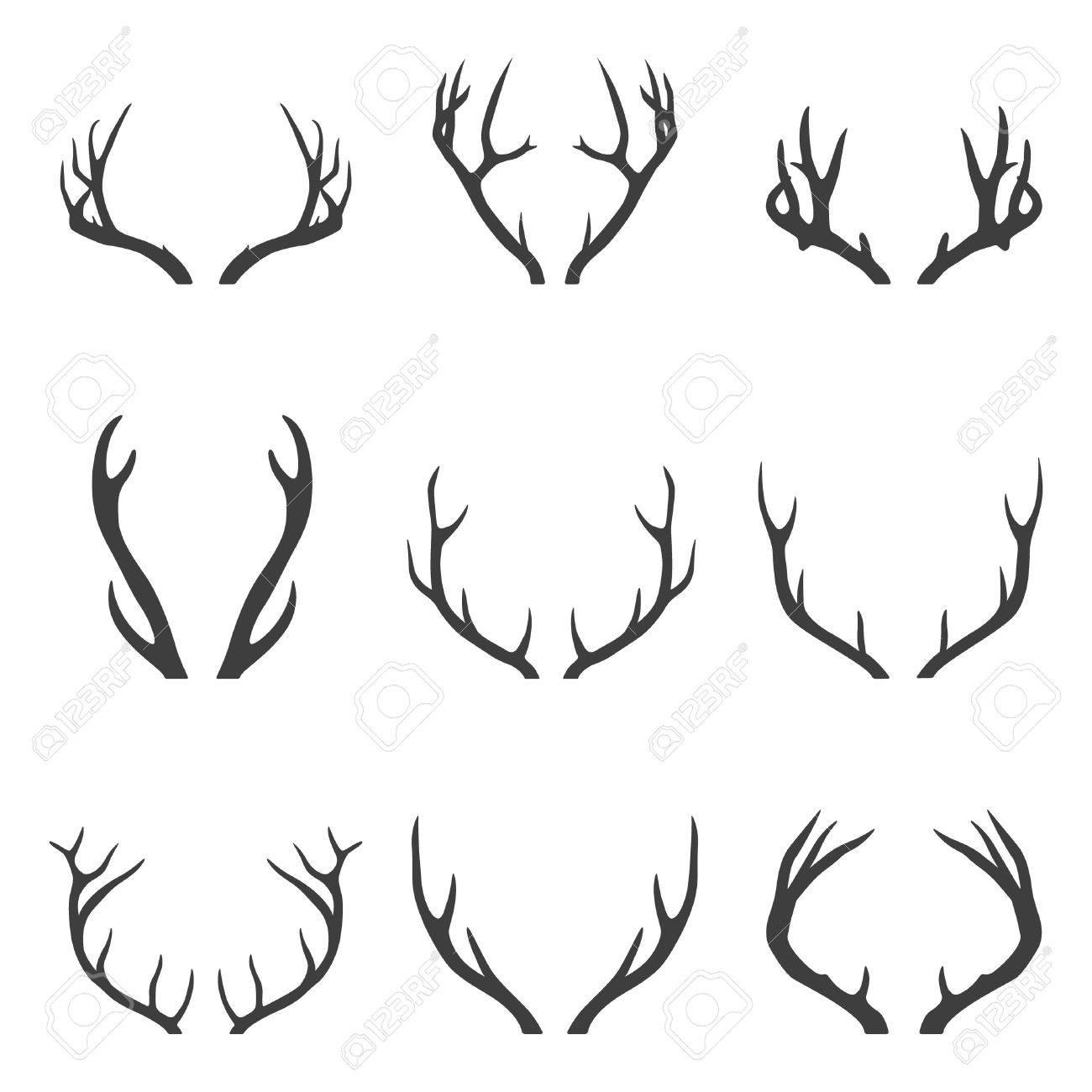 Set of deer horns. Vector EPS8 illustration. - 50019432